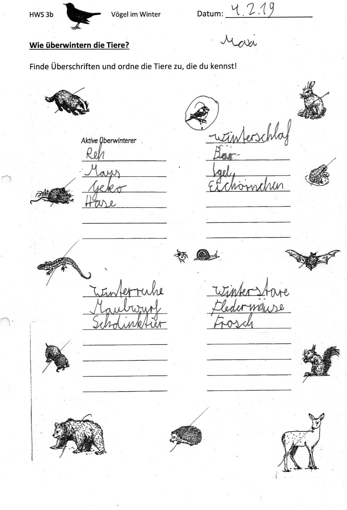 Tiere Im Winter Klasse 4
